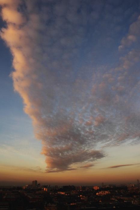 朝焼けの航跡雲ーⅠ_b0268615_7575132.jpg