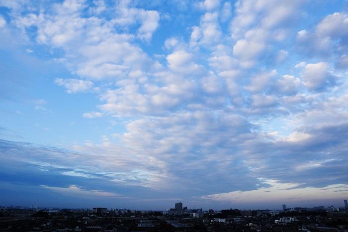 放射状雲(層積雲)_b0268615_8182336.jpg