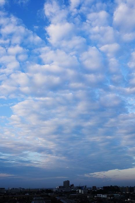 放射状雲(層積雲)_b0268615_8184712.jpg