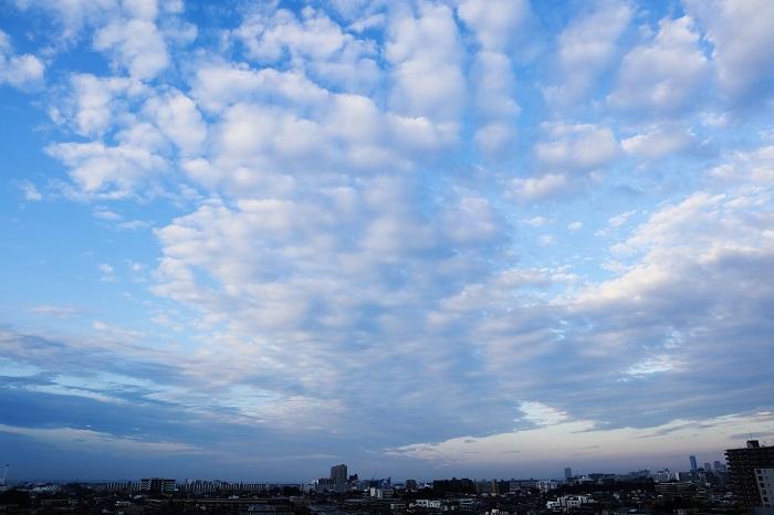 放射状雲(層積雲)_b0268615_819886.jpg