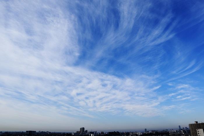 飛行機雲ーⅡ_b0268615_8451350.jpg