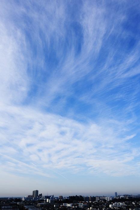 飛行機雲ーⅡ_b0268615_8454236.jpg