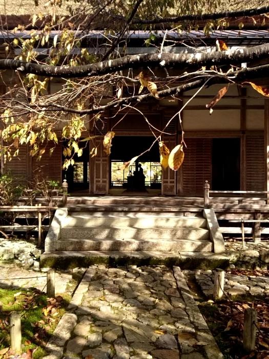 幸せ京都旅 「常照皇寺」 静寂なる禅寺の美しき紅葉_c0362623_15454944.jpg