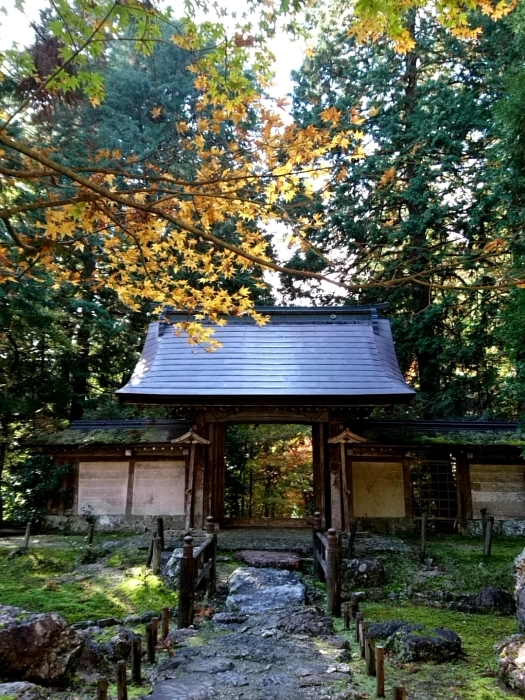 幸せ京都旅 「常照皇寺」 静寂なる禅寺の美しき紅葉_c0362623_15455117.jpg