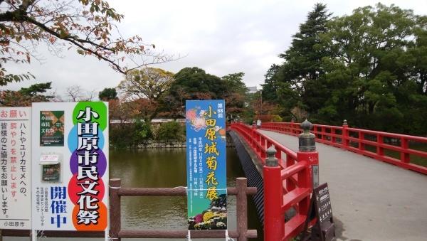 早川漁港で鯵づくし!_a0351368_10374070.jpg