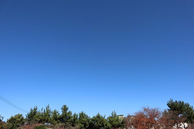 冬が来る!  快晴_b0239402_15523788.jpg