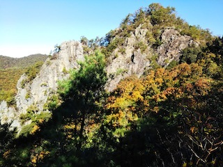 高木山探検とクライミング_c0359615_19383527.jpg