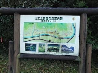高木山探検とクライミング_c0359615_19392921.jpg