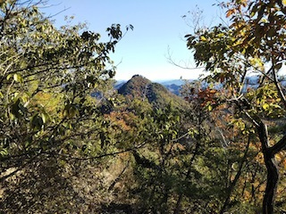 高木山探検とクライミング_c0359615_19411190.jpg