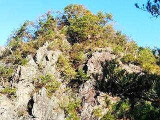 高木山探検とクライミング_c0359615_19415209.jpg