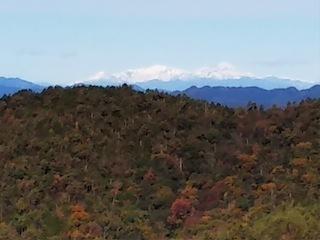 高木山探検とクライミング_c0359615_19421585.jpg