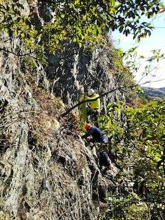 高木山探検とクライミング_c0359615_19424200.jpg