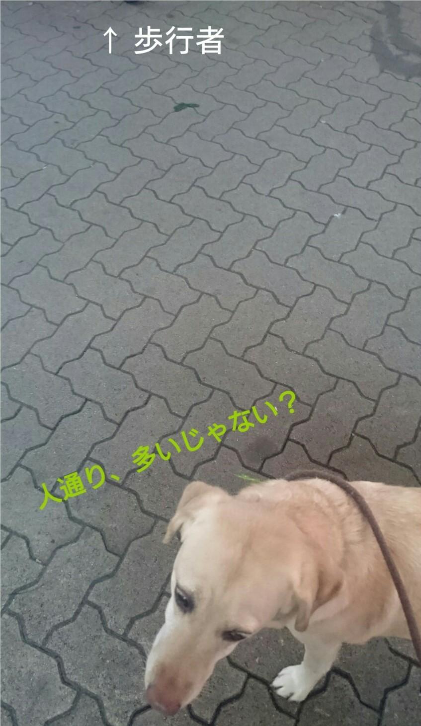 b0339522_23414172.jpg