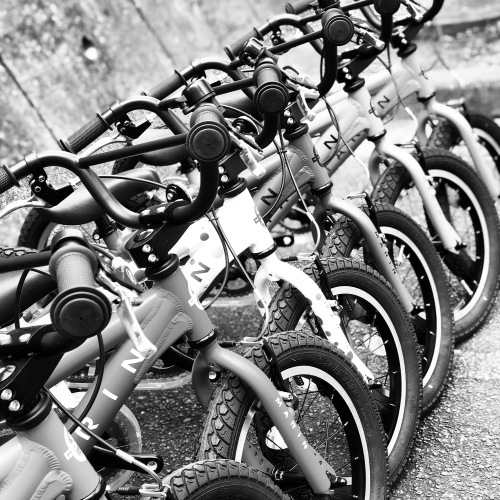 2019 MARIN「DONKY Jr 16」マリン ドンキーjr 16インチ キッズ おしゃれ子供車 おしゃれ自転車 子供車 リピトキッズ_b0212032_17341645.jpeg