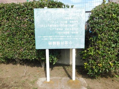 野川写真日記(逆さ看板)_c0338136_14274531.jpg