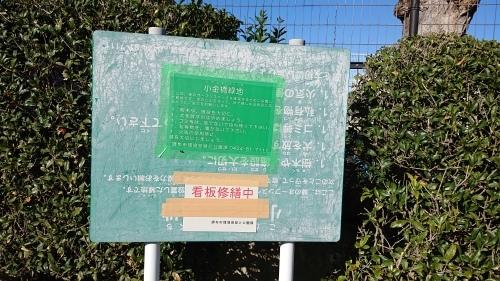 野川写真日記(逆さ看板)_c0338136_14295228.jpg