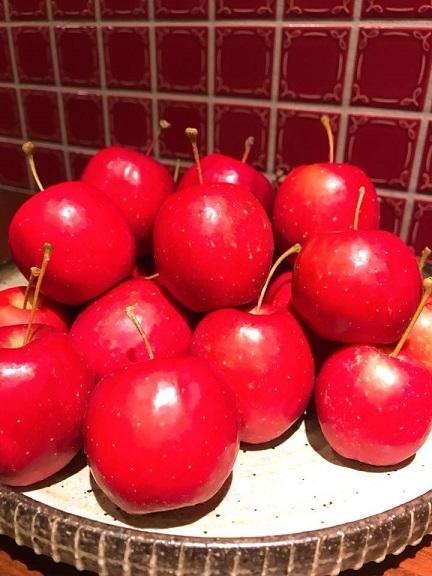 【わたし姫リンゴ〜。】_b0206537_15584471.jpg