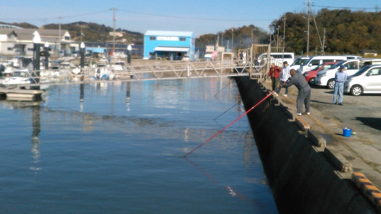 桟橋情報_b0077743_16171636.jpg