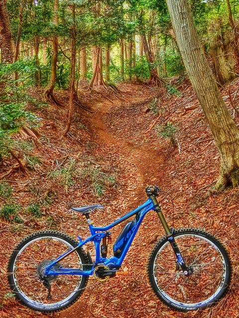 e-mountainbike dreamin XXX_b0049658_17194726.jpg