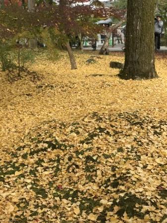 秋の京都へ_b0341759_00294507.jpg