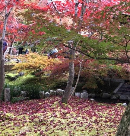 秋の京都へ_b0341759_01365693.jpg