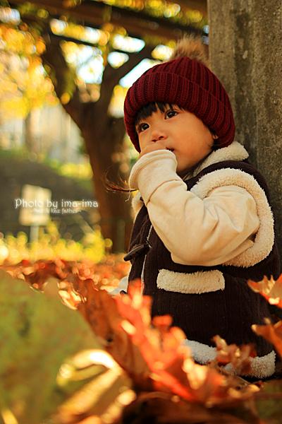 秋模様。。。_b0228827_20003080.jpg
