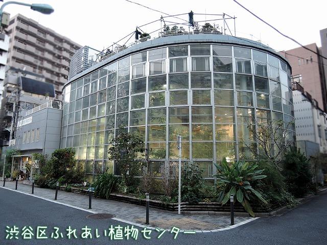 夕方エア散歩_c0062832_20381672.jpg