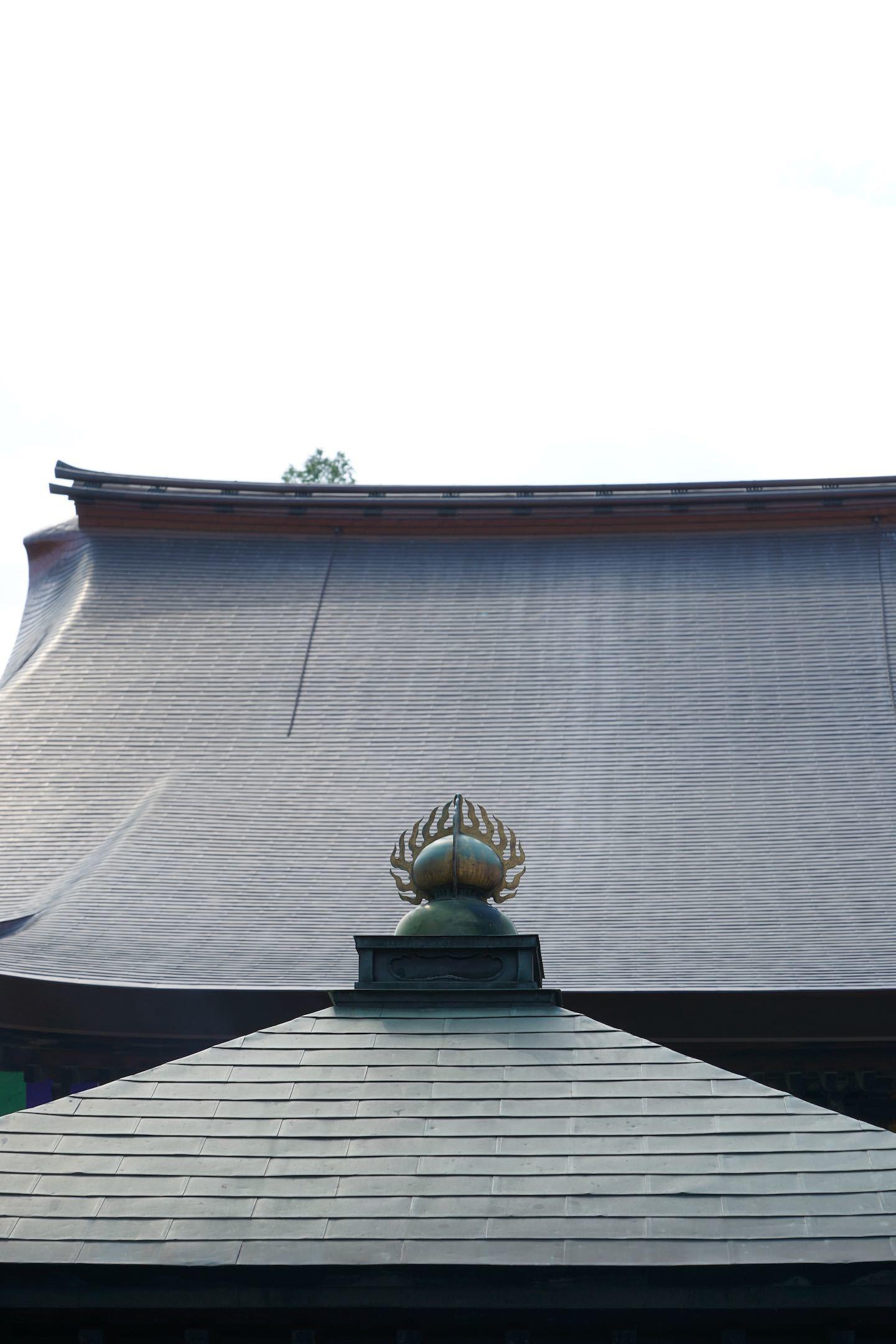 高幡不動尊金剛寺 1_b0360240_18305881.jpg