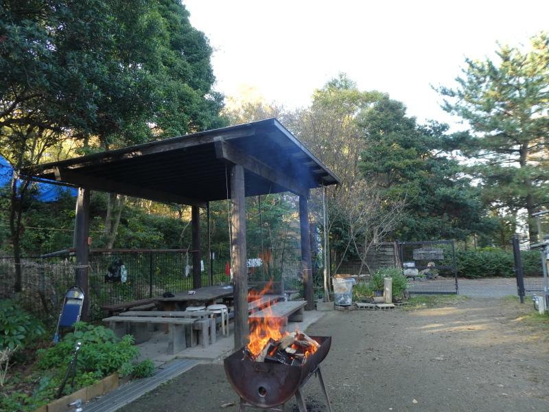 木のツリー試作・イベント準備・・・うみべの森_c0108460_19221535.jpg