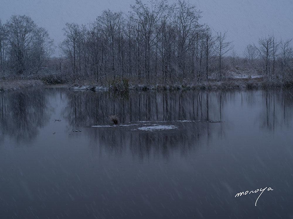 雪降る沼_c0085877_04125357.jpg