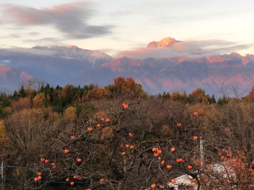 冠雪が始まる。甲斐駒ケ岳、八ヶ岳はやっと赤岳が冠雪しはじめました。_d0338282_11160837.jpg