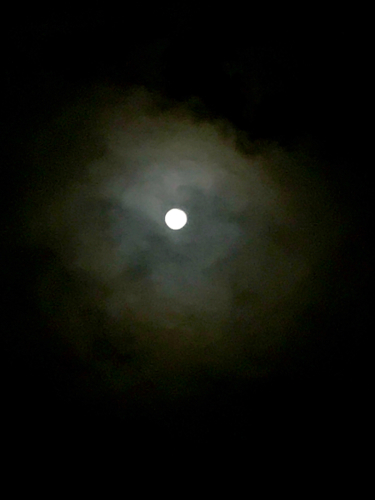 月見酒_f0061797_19403747.jpg