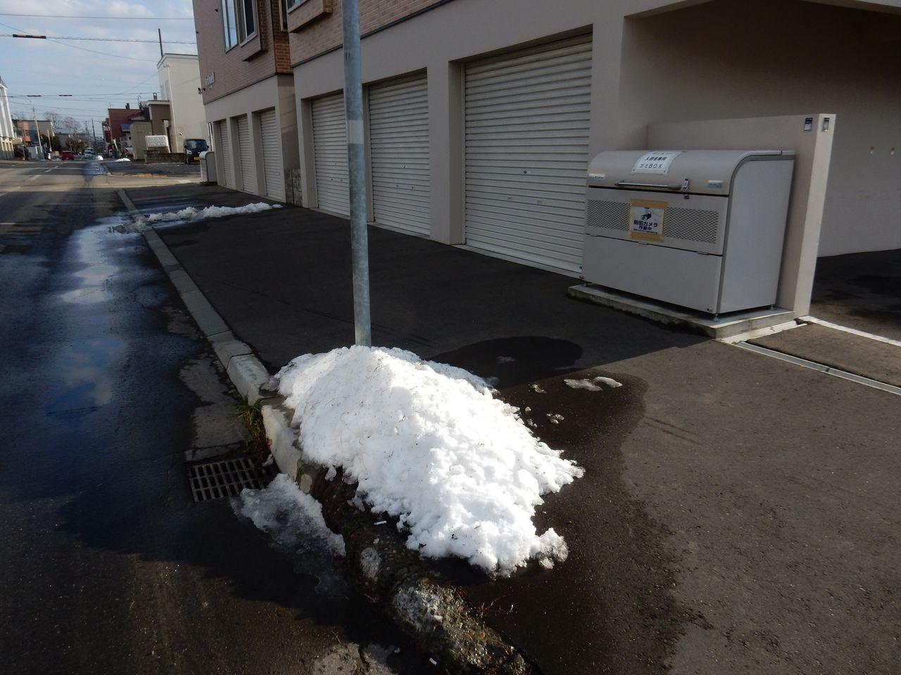 雪の季節をリセット_c0025115_21214595.jpg