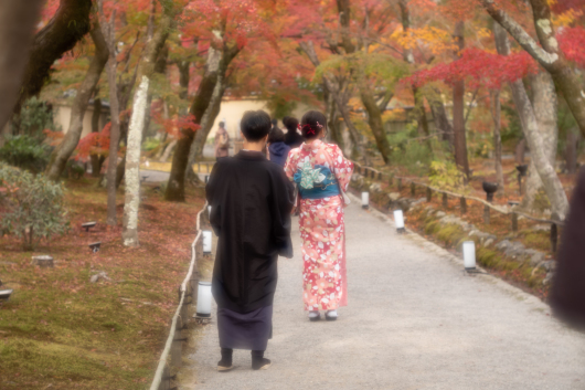 Autumn colors    ・・・京都・・・_f0333031_07013885.jpg