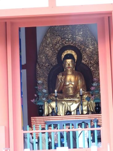 興福寺中金堂_d0085634_12215992.jpg