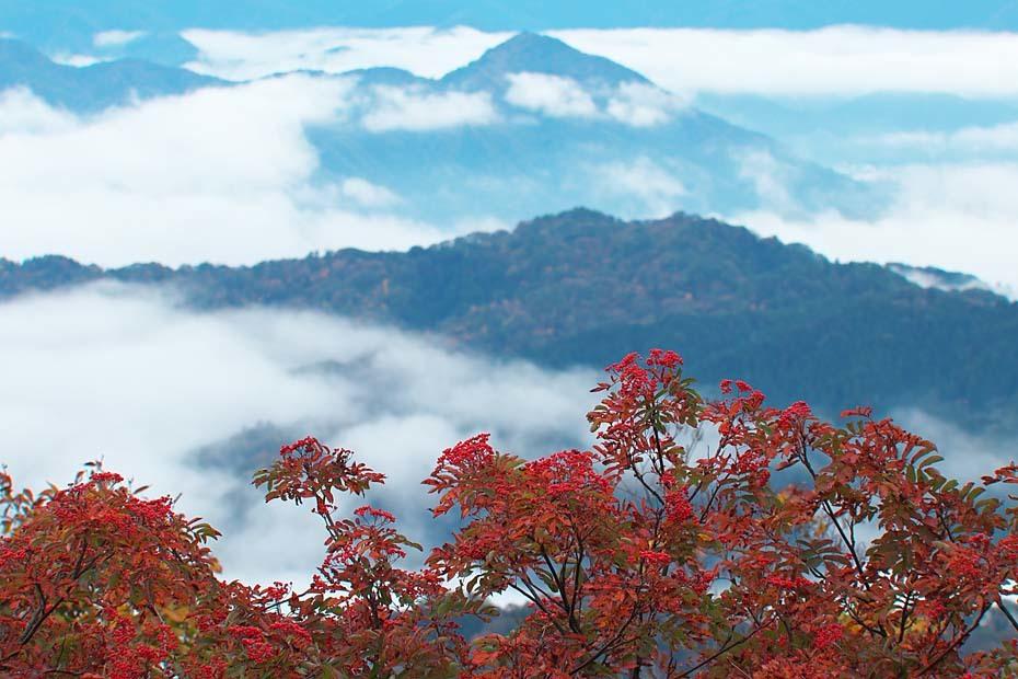 大岡山の雲海_c0067040_23331466.jpg