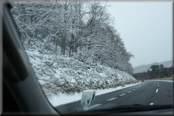 雪です!!_f0363141_08151630.jpg