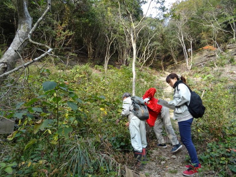 「自然再生実地研修」が 孝子の森で実施されます_c0108460_21002050.jpg