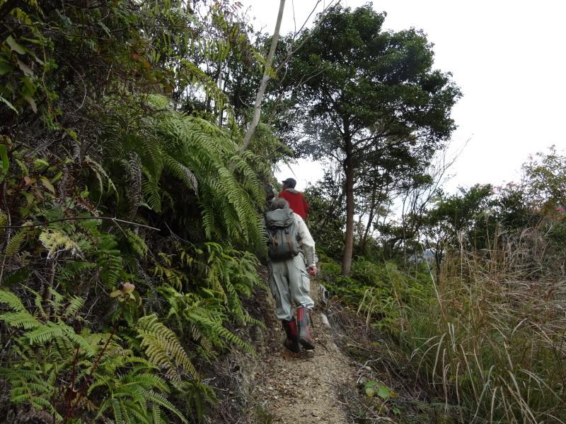 「自然再生実地研修」が 孝子の森で実施されます_c0108460_21010380.jpg