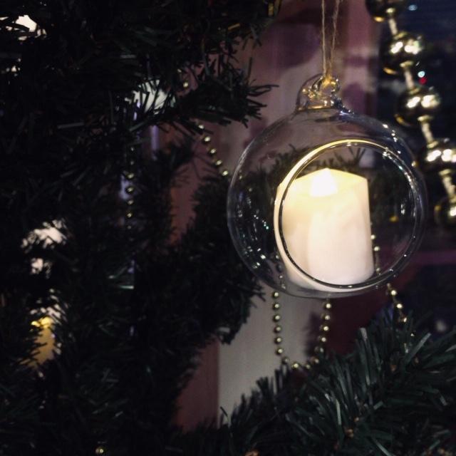 クリスマスツリーのオーナメント_b0112371_18295927.jpg