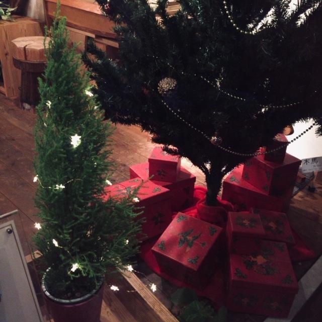 クリスマスツリーのオーナメント_b0112371_18301530.jpg