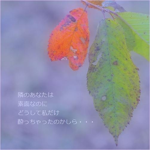 b0154475_23273504.jpg