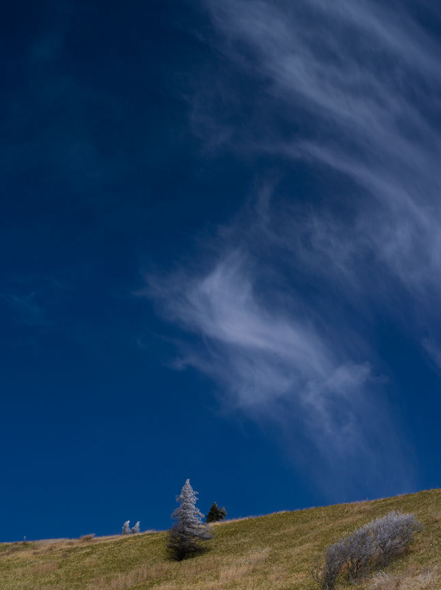 高原の雲_c0085877_05272712.jpg