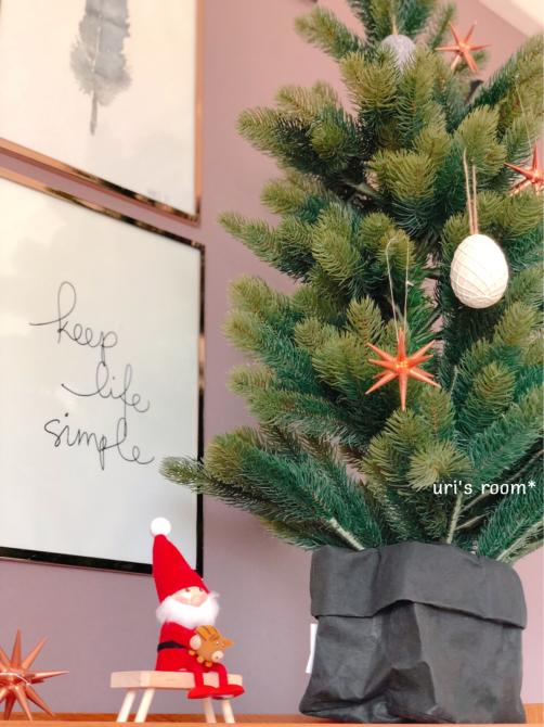 今年も毎年恒例のあのイベントに行って来ました。あの人と!…それから、クリスマスツリーを出しました(´∀`)_a0341288_09581679.jpg