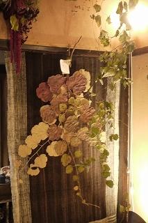 フボーと植物展 白(ハク)7 at  hakutoya  sasayama~夜~_f0226293_08370480.jpg