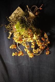フボーと植物展 白(ハク)7 at  hakutoya  sasayama~夜~_f0226293_08375982.jpg