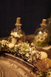 フボーと植物展 白(ハク)7 at  hakutoya  sasayama~夜~_f0226293_08380450.jpg
