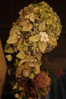 フボーと植物展 白(ハク)7 at  hakutoya  sasayama~夜~_f0226293_08391938.jpg