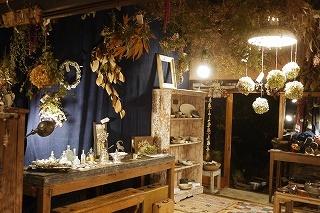 フボーと植物展 白(ハク)7 at  hakutoya  sasayama~夜~_f0226293_08393278.jpg