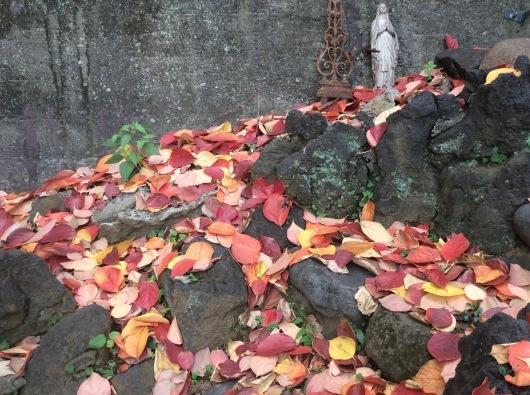 落ち葉の天使_c0203401_23260583.jpg